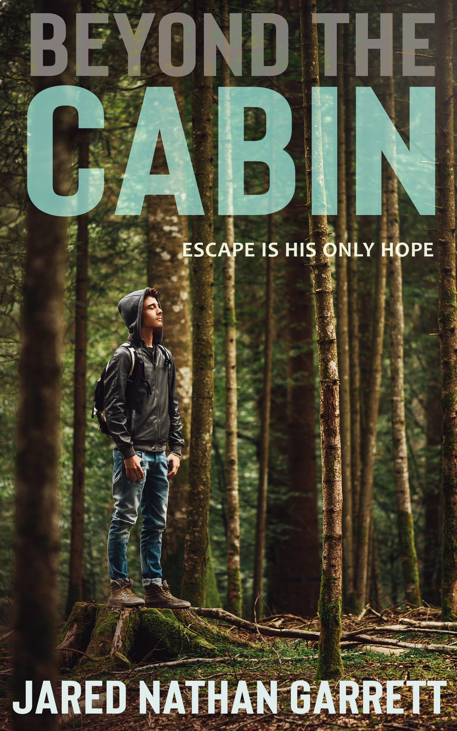 Cover of beyond the cabin